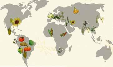 nutzpflanzen-karte
