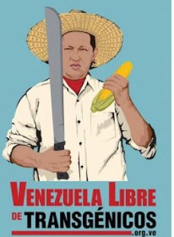 latino plakat gegen gentechnik